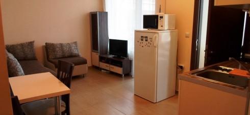 Апартамента е от редкия тип варианти при които в неголяма площ е постигнат ефекта на двустайния апартамент, но в умален...