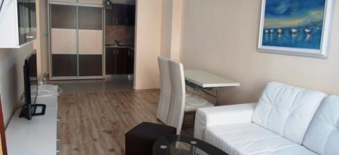 Просторен двустаен апартамент с много удобна вътрешна планировка: голям хол, кухненски бокс, спалня, баня и тоалетна, складово помещение, коридор и...